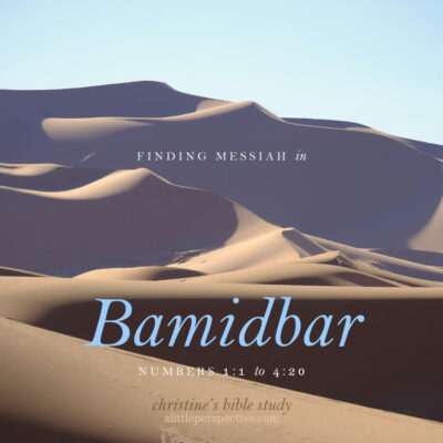 Finding Messiah in Bamidbar, Numbers 1:1-4:20