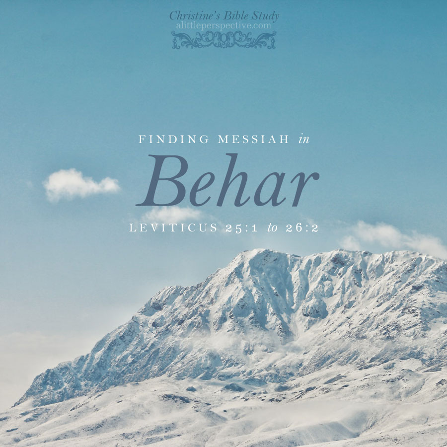 Finding Messiah in Behar, Leviticus 25:1-26:2 | christine's bible study @ alittleperspective.com