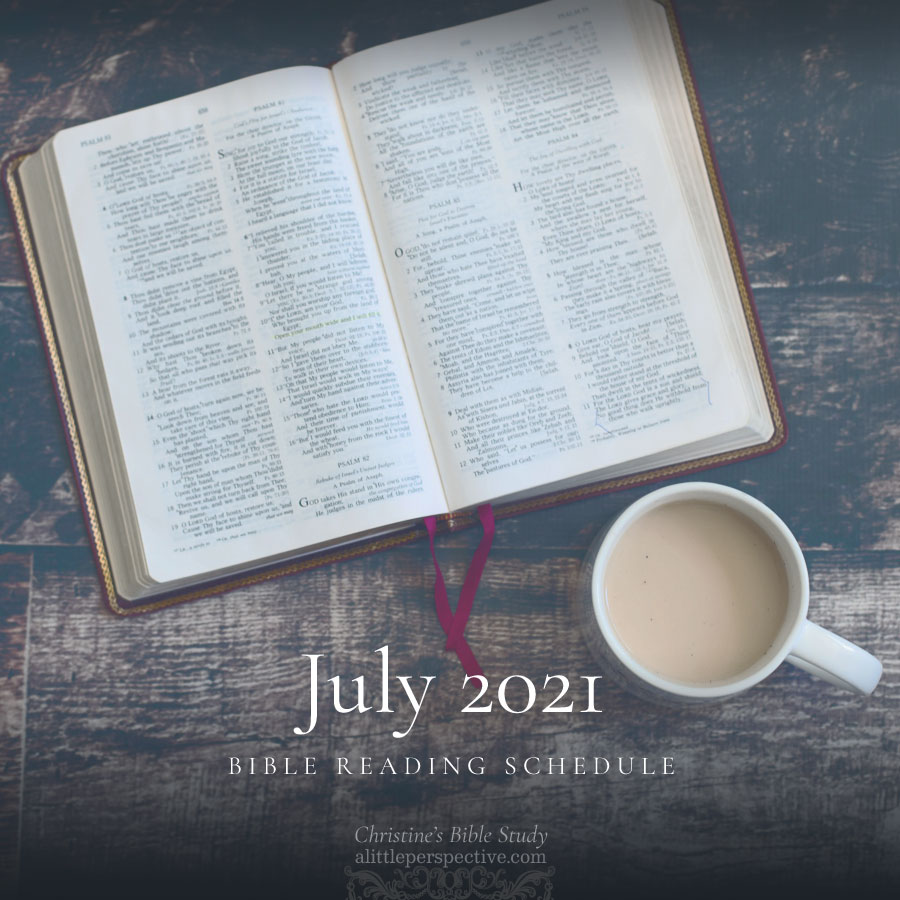 July 2021 Bible Reading Schedule   Christine's Bible Study @ alittleperspective.com