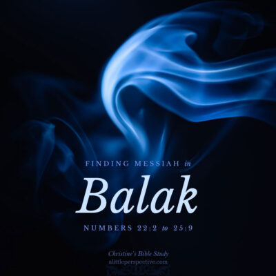 Finding Messiah in Balak, Numbers 22:2-25:9