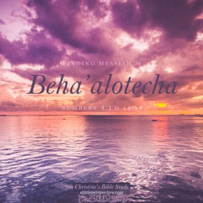 Finding Messiah in Beha'alotecha, Numbers 8:1-12:16