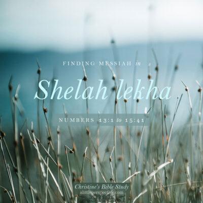 Finding Messiah in Shelah Lekha, Numbers 13:1-15:41