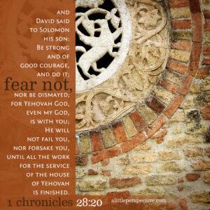 1 Chr 28:20   Scripture Pictures @ alittleperspective.com