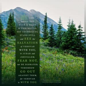 2 Chr 20:17 | Scripture Pictures @ alittleperspective.com