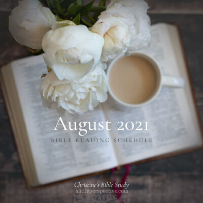 August 2021 Bible Reading Schedule | Christine's Bible Study @ alittleperspective.com