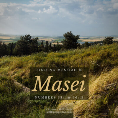 Finding Messiah in Masei, Numbers 33:1-36:13