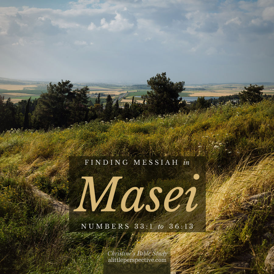 Finding Messiah in Masei, Numbers 33:1-36:13   Christine's Bible Study @ alittleperspective.com