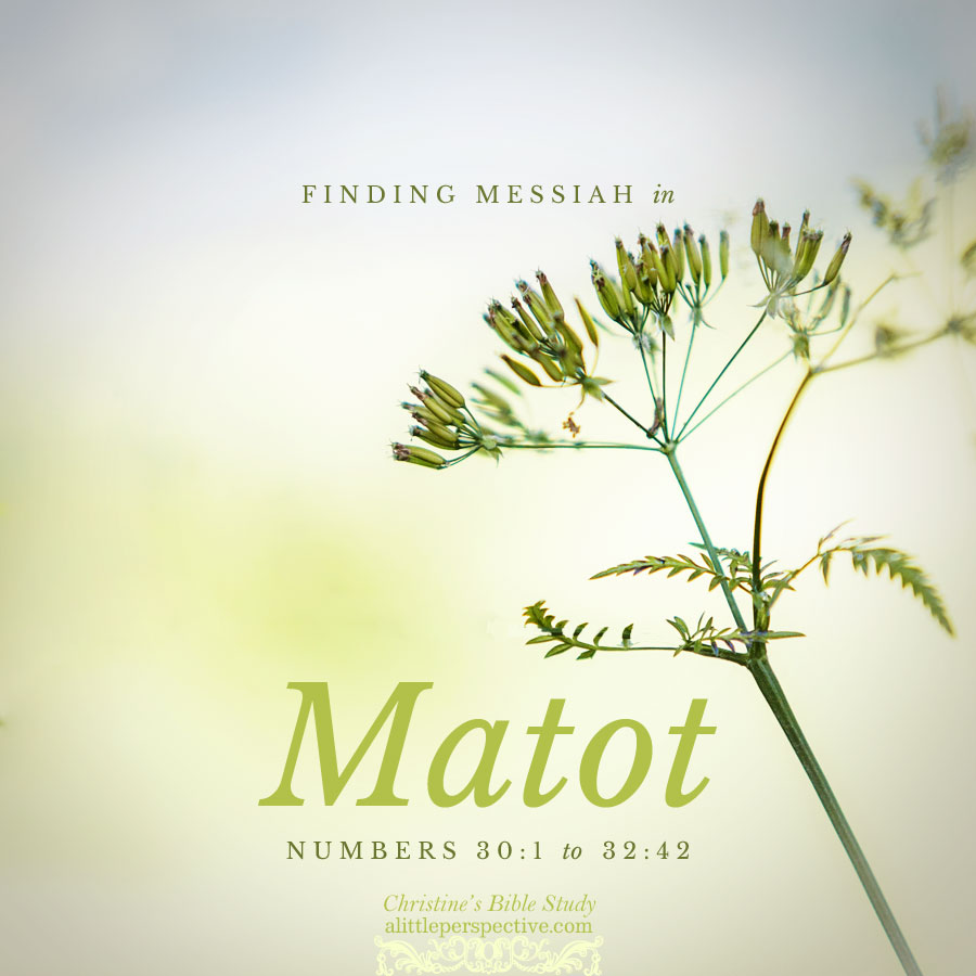 Finding Messiah in Matot, Numbers 30:1-32:42 | Christine's Bible Study @ alittleperspective.com