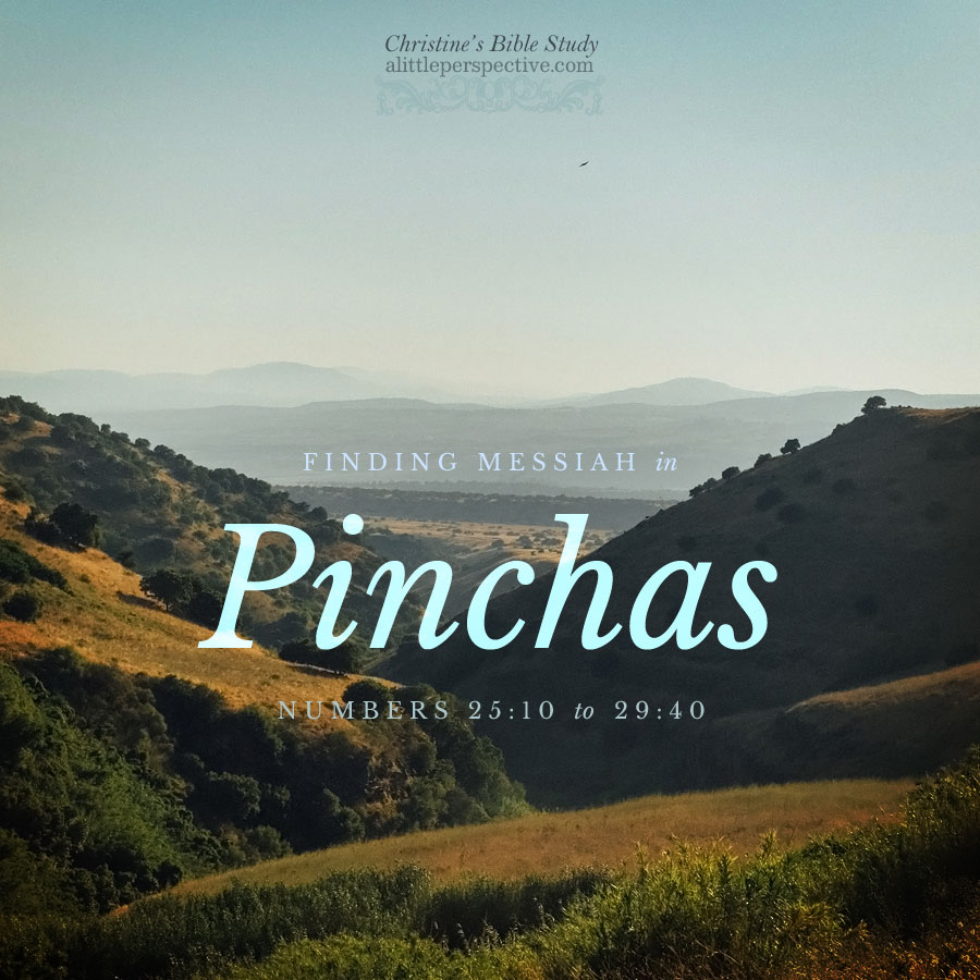 Finding Messiah in Pinchas, Numbers 25:10-29:40   Christine's Bible Study @ alittleperspective.com
