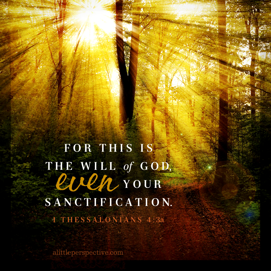 1 The 4:3 | Scripture Pictures @ alittleperspective.com