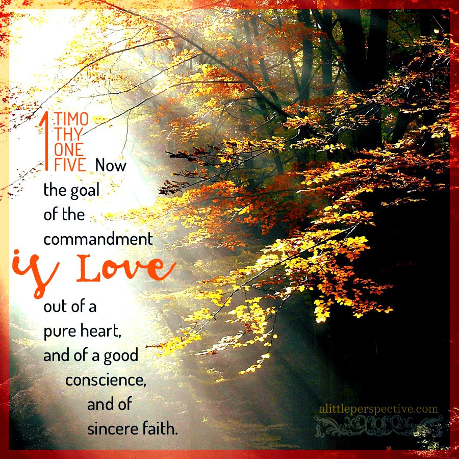 1 Tim 1:5 | Scripture Pictures @ alittleperspective.com