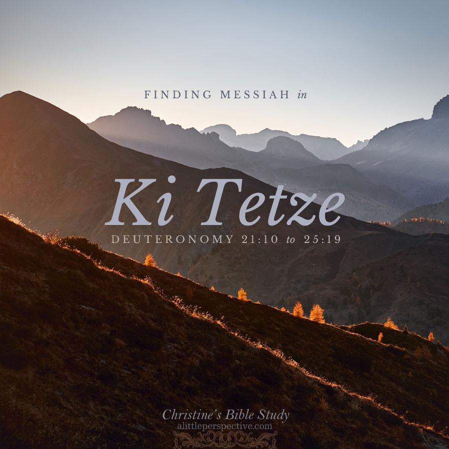 Finding Messiah in Ki Tetze, Deu 21:10-25:19 | Christine's Bible Study @ alittleperspective.com