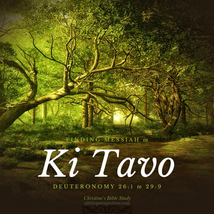 Finding Messiah in Ki Tavo, Deuteronomy 26:1-29:9   Christine's Bible Study @ alittleperspective.com
