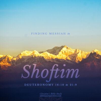 Finding Messiah in Shoftim, Deuteronomy 16:18-21:9