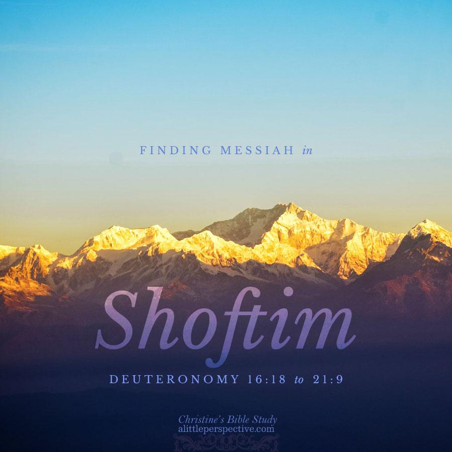 Finding Messiah in Shoftim, Deuteronomy 16:18-21:9 | Christine's Bible Study @ alittleperspective.com