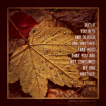 Gal 5:15   Scripture Pictures @ alittleperspective.com