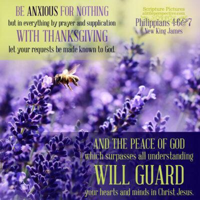 September 07 Bible Reading