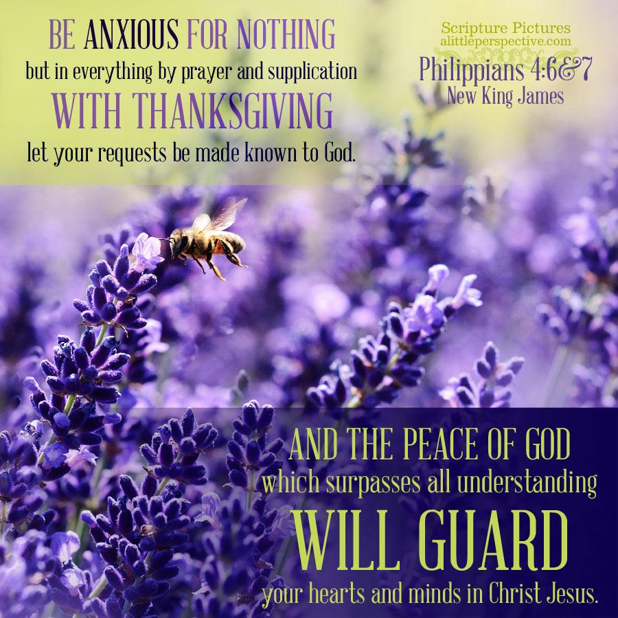 Phi 4:6-7 | Scripture Pictures @ alittleperspective.com