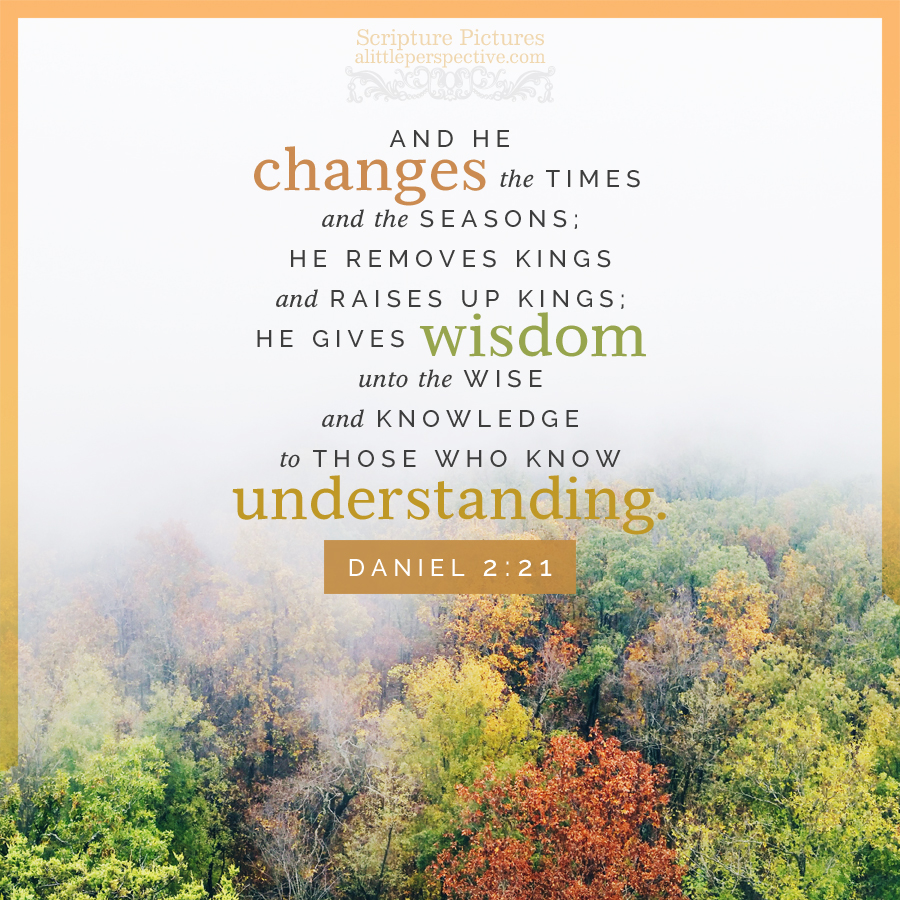 Dan 2:21   Scripture Pictures @ alittleperspective.com