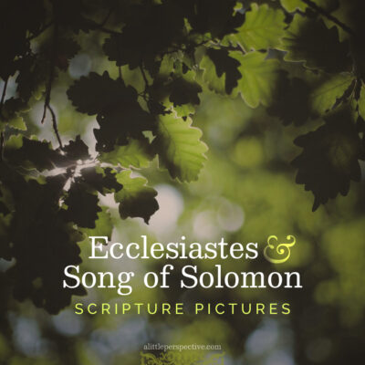 Ecclesiastes and Song of Solomon Scripture Pictures