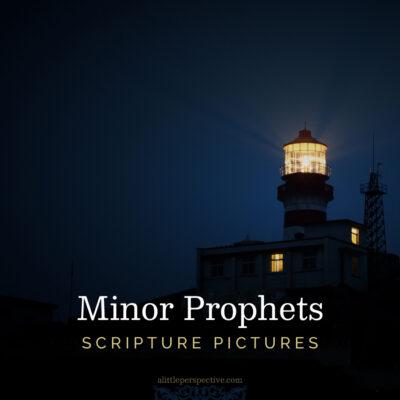 Minor Prophets Scripture Pictures