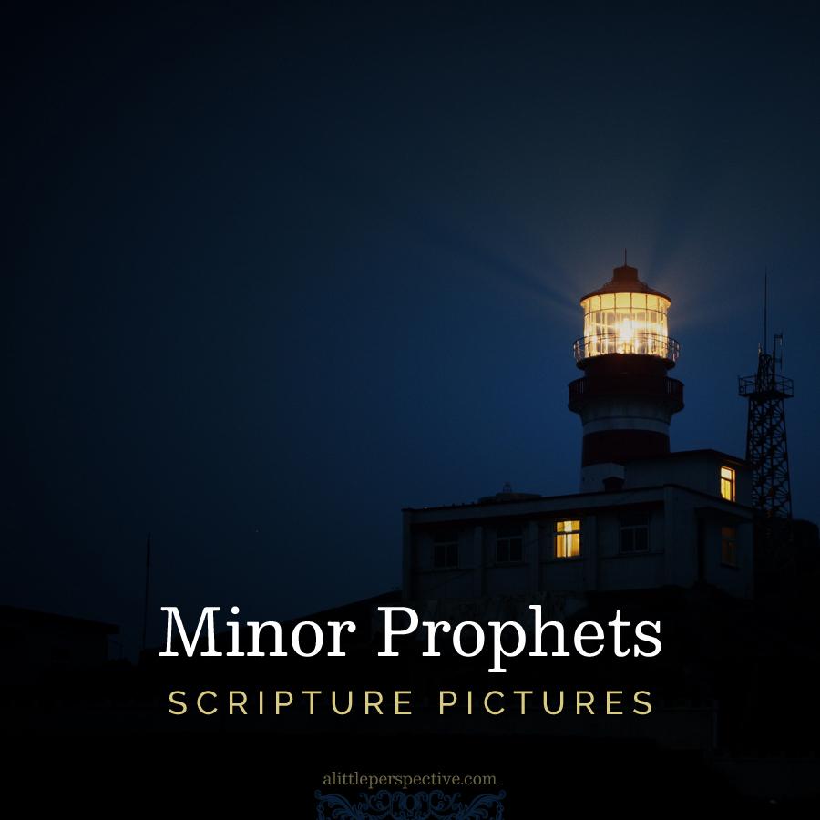 Minor Prophets Scripture Pictures | alittleperspective.com