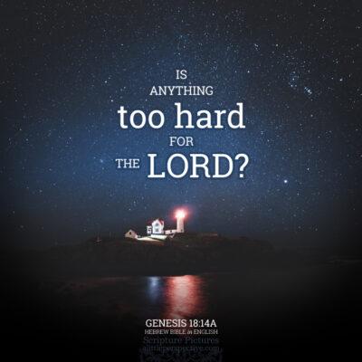 October 23 Bible Reading