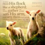 Isa 40:11 | Scripture Pictures @ alittleperspective.com